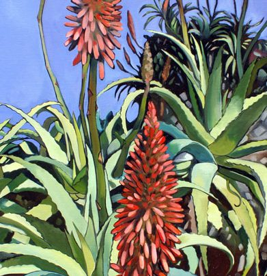 Aloes Image
