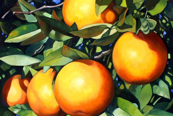 Orange Branch Image