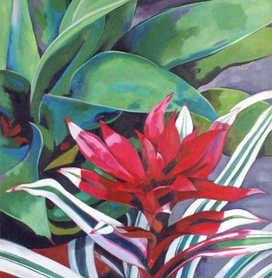Patio Plants Image